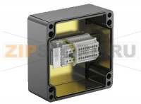 Взрывозащищённая коробка Terminal Junction Boxes Glass Fiber Reinforced Polyester (GRP) GL***.T Pepperl+Fuchs