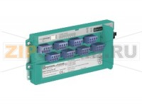 Интерфейс Temperature Multi-Input Device for Cabinet Installation RD0-TI-Ex8.PA.* Pepperl+Fuchs