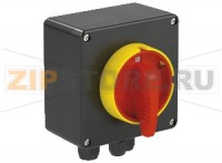 Выключатель Safety Switch Ex e 25 A 3 Pole, GRP Enclosure SAF.P.025.3P.1NO Pepperl+Fuchs
