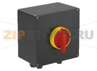 Выключатель Safety Switch Ex e 40 A 3 Pole, GRP Enclosure SAF.P.040.3P.1NO Pepperl+Fuchs