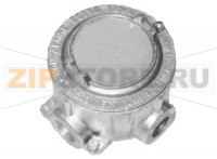 Корпус Instrument Housing for Thermocouple/RTD SK Pepperl+Fuchs